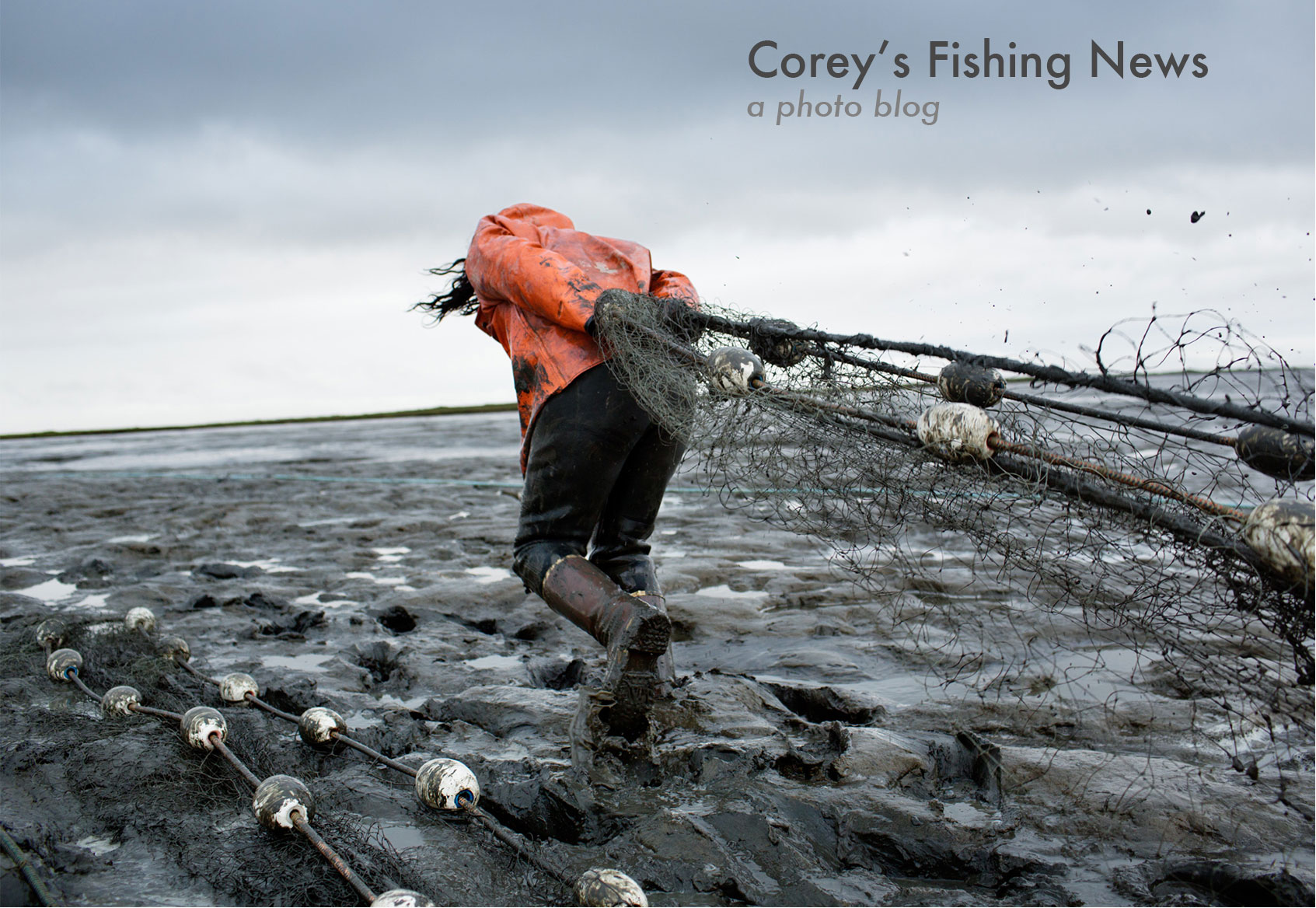 Corey 39 s fishing news commercial fishing in alaska and for What is commercial fishing