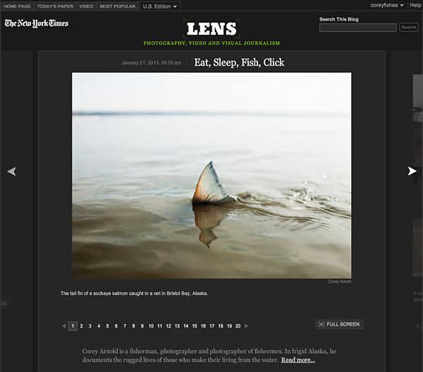 coreyfishes shark fin salmon NY Times Corey Arnold photography press