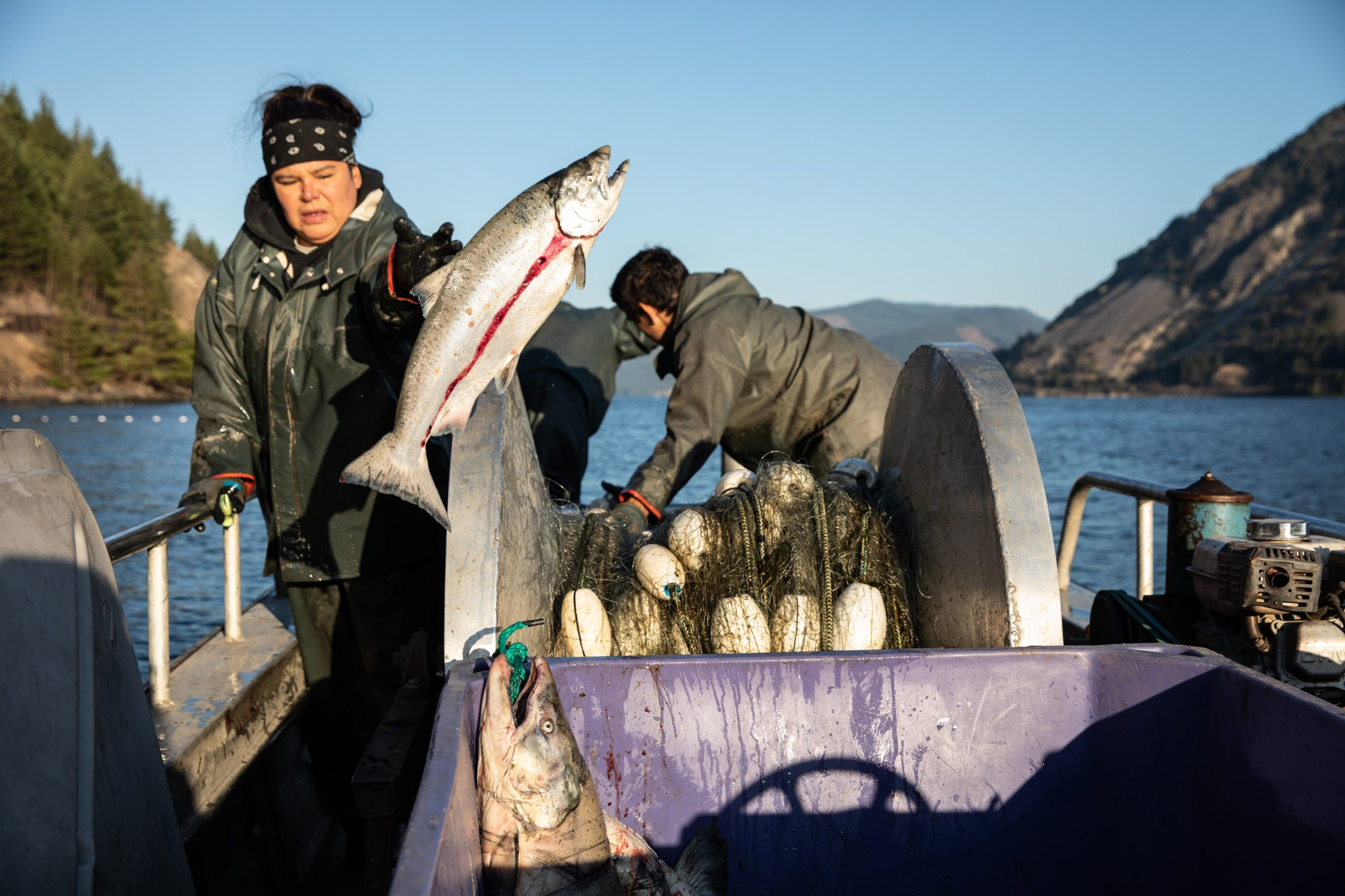 Corey's Fishing News | Commercial Fishing in Alaska and the